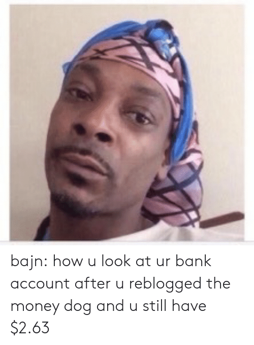 Money, Target, and Tumblr: bajn:  how u look at ur bank account after u reblogged the money dog and u still have $2.63