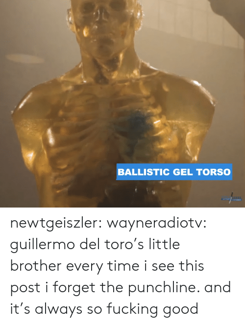 Guillermo Del Toro: BALLISTIC GEL TORSO newtgeiszler: wayneradiotv: guillermo del toro's little brother every time i see this post i forget the punchline. and it's always so fucking good