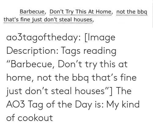 """Dont Try: Barbecue, Don't Try This At Home, not the bbq  that's fine just don't steal houses, ao3tagoftheday:  [Image Description: Tags reading """"Barbecue, Don't try this at home, not the bbq that's fine just don't steal houses""""]  The AO3 Tag of the Day is: My kind of cookout"""