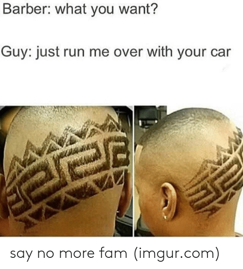 Barber, Fam, and Run: Barber: what you want?  Guy: just run me over with your car say no more fam (imgur.com)