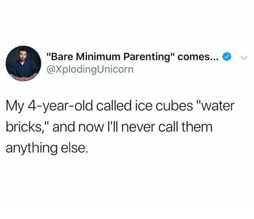 """Dank, Water, and Old: """"Bare Minimum Parenting"""" comes  @XplodingUnicorn  My 4-year-old called ice cubes """"water  bricks,"""" and now I'll never call them  anything else"""