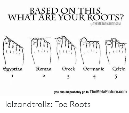 Celtic, Tumblr, and Blog: BASED ON THIS,  WHAT ARE YOUR ROOTS?  by THEMETAPICTURE.COM  Egyptian  Roman  Greek  Germanic  Celtic  4  S  2  you should probably go to TheMetaPicture.com lolzandtrollz:  Toe Roots