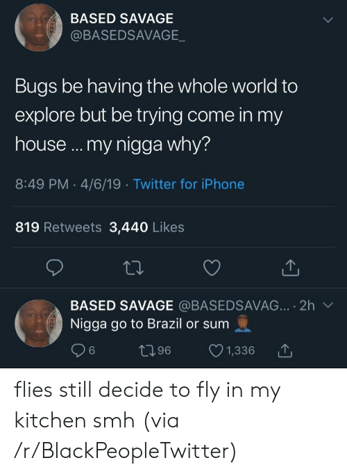 Brazil: BASED SAVAGE  @BASEDSAVAGE  Bugs be having the whole world to  explore but be trying come in my  house ... my nigga why?  8:49 PM 4/6/19 Twitter for iPhone  819 Retweets 3,440 Likes  BASED SAVAGE @BASEDSAVAG... 2h  Nigga go to Brazil or sum  t96  6  1,336 flies still decide to fly in my kitchen smh (via /r/BlackPeopleTwitter)