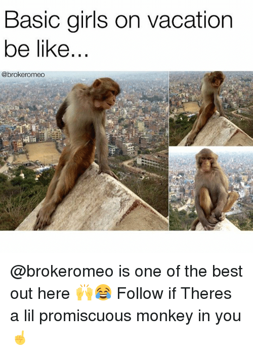 promiscuous: Basic girls on vacation  be like  @brokeromeo @brokeromeo is one of the best out here 🙌😂 Follow if Theres a lil promiscuous monkey in you☝️