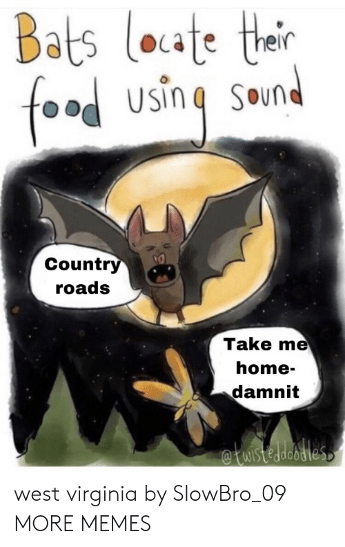 Virginia: Bats loate thair  food  SOund  Country  roads  Take me  home-  damnit  WIstedeodles west virginia by SlowBro_09 MORE MEMES