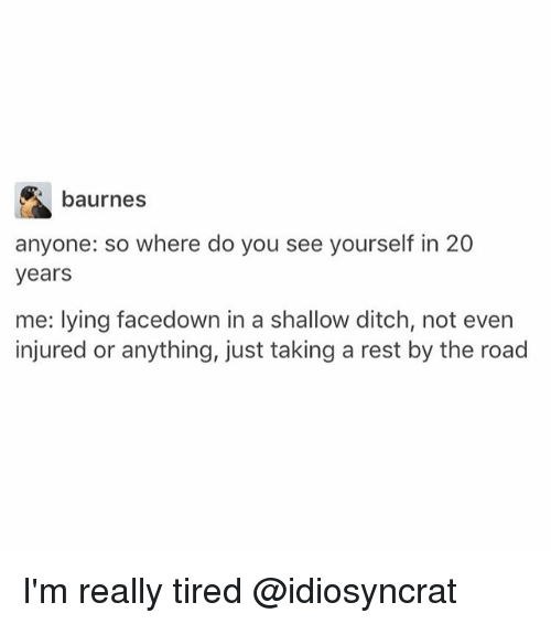 Memes, Lying, and The Road: baurnes  anyone: so where do you see yourself in 20  years  me: lying facedown in a shallow ditch, not even  injured or anything, just taking a rest by the road I'm really tired @idiosyncrat