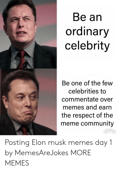 Community, Dank, and Meme: Be an  ordinary  celebrity  Be one of the few  celebrities to  commentate over  memes and earn  the respect of the  meme community Posting Elon musk memes day 1 by MemesAreJokes MORE MEMES