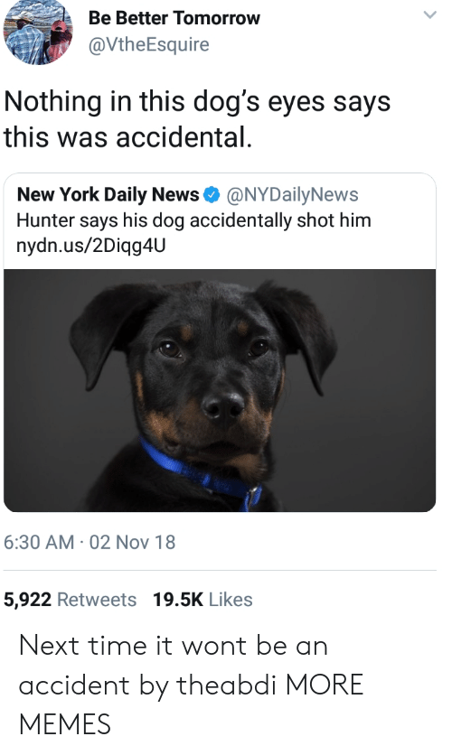 Nydailynews: Be Better Tomorrow  @VtheEsquire  Nothing in this dog's eyes says  this was accidental  New York Daily News Φ @NYDailyNews  Hunter says his dog accidentally shot him  nydn.us/2Diqg4U  6:30 AM 02 Nov 18  5,922 Retweets 19.5K Likes Next time it wont be an accident by theabdi MORE MEMES