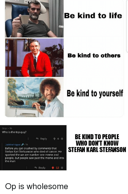Life, Meme, and Saw: Be kind to life  Be kind to others  Be kind to yourself  0  Dirjcl 7h  Who is the top guy?  BE KIND TO PEOPLE  WHO DON'T KNOW  STEFAN KARL STEFANSON  Reply t6  ashthe1ripper.h  Before you get crushed by comments that  Stefan Karl Stefaanson who died of cancer. He  sparked the we are number one meme and  people, but people saw past the meme and into  the man  Reply  12 Op is wholesome
