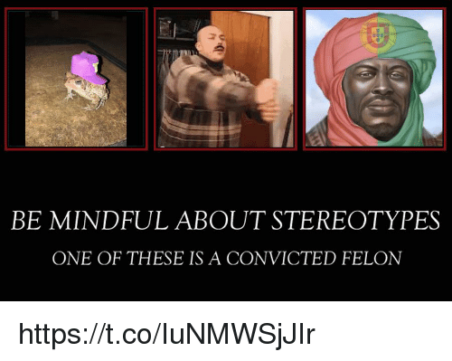 Convicted: BE MINDFUL ABOUT STEREOTYPES  ONE OF THESE IS A CONVICTED FELON https://t.co/IuNMWSjJIr