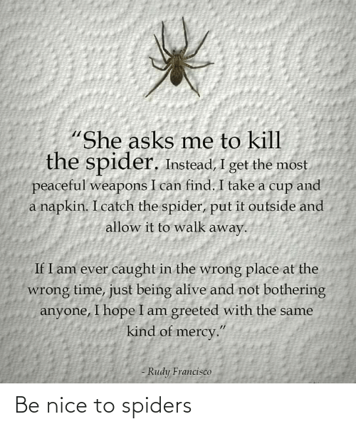Spiders: Be nice to spiders