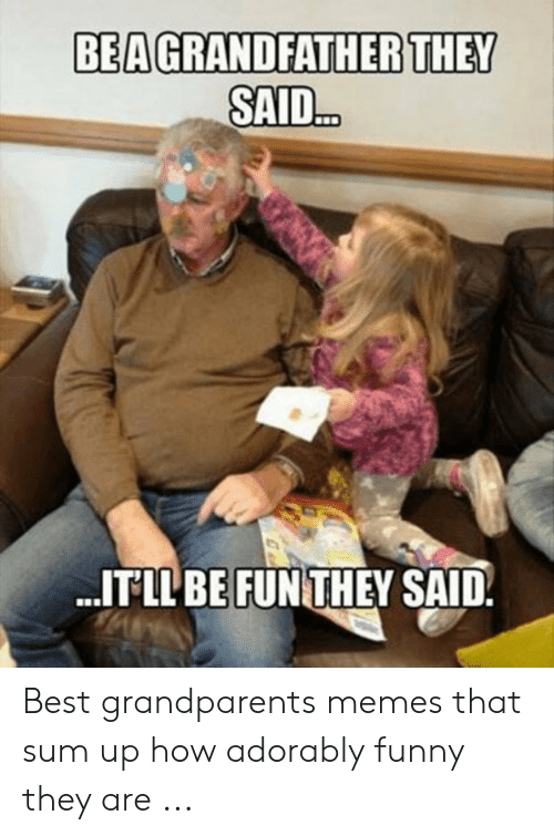 Adorably Funny: BEAGRANDFATHER THEY  SAID..  ITLL BE FUNTHEY SAID. Best grandparents memes that sum up how adorably funny they are ...