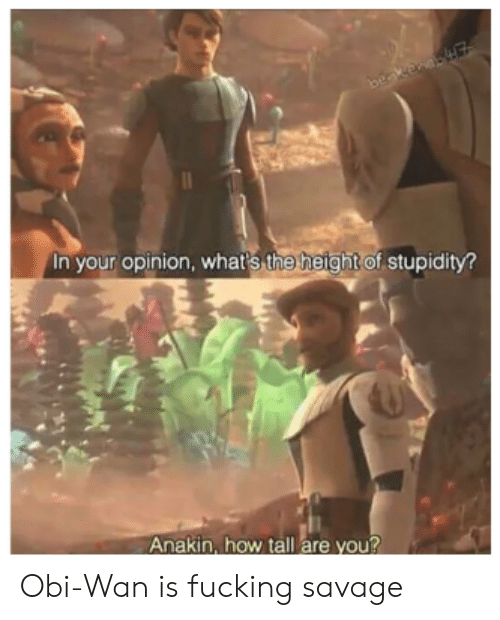 The Height Of: beakenaE  In your opinion, whar's the height of stupidity?  Anakin, how tall are you? Obi-Wan is fucking savage