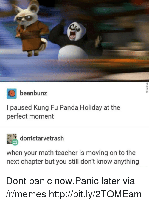 kung fu: beanbunz  I paused Kung Fu Panda Holiday at the  perfect moment  dontstarvetrash  when your math teacher is moving on to the  next chapter but you still don't know anything Dont panic now.Panic later via /r/memes http://bit.ly/2TOMEam