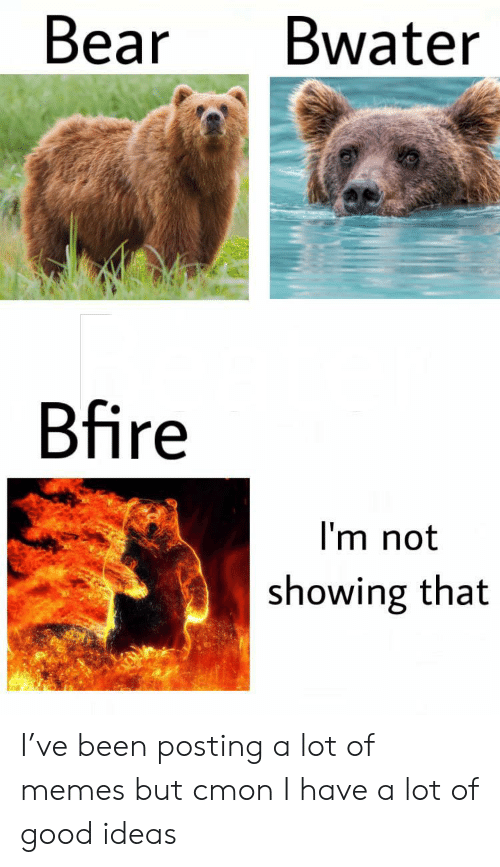 Memes, Bear, and Good: Bear  Bwater  Bfire  I'm not  showing that I've been posting a lot of memes but cmon I have a lot of good ideas