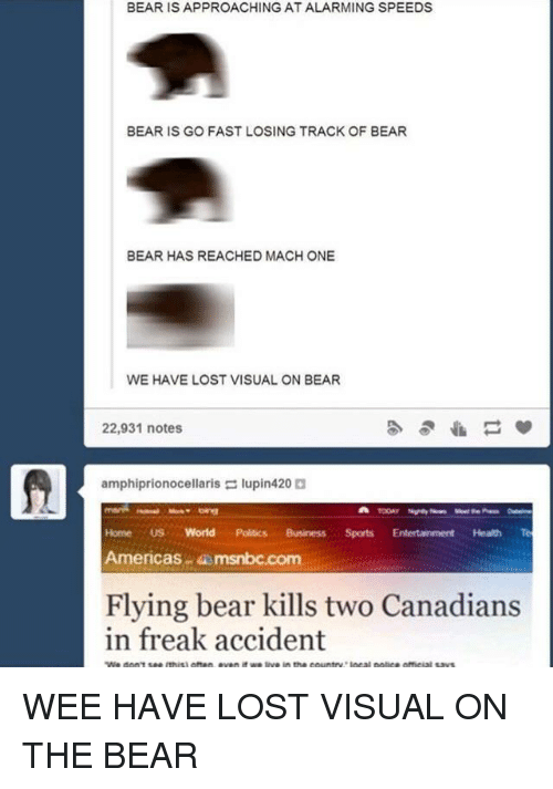 Politics, Wee, and Lost: BEAR IS APPROACHING AT ALARMING SPEEDS  BEAR IS GO FAST LOSING TRACK OF BEAR  BEAR HAS REACHED MACH ONE  WE HAVE LOST VISUAL ON BEAR  22,931 notes  amphiprionocellaris lupin420  Home US World Politics BusinessSports Entertainment Health Te  Americas msnbc.com  Flying bear kills two Canadians  in freak accident WEE HAVE LOST VISUAL ON THE BEAR