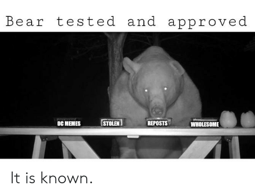 Memes Wholesome: Bear tested and approved  STOLEN  REPOSTS  oC MEMES  WHOLESOME It is known.
