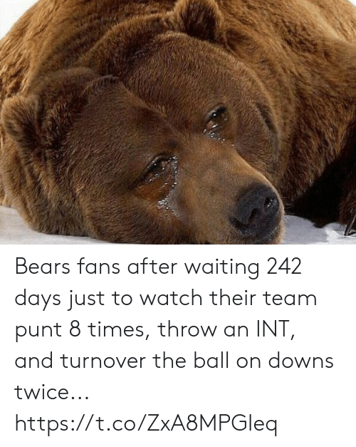 Football, Nfl, and Sports: Bears fans after waiting 242 days just to watch their team punt 8 times, throw an INT, and turnover the ball on downs twice... https://t.co/ZxA8MPGIeq
