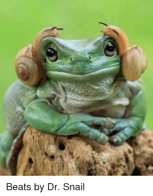 Snailed: Beats by Dr. Snail
