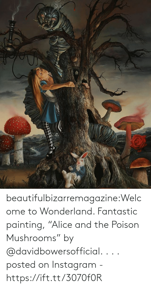 "painting: beautifulbizarremagazine:Welcome to Wonderland. Fantastic painting, ""Alice and the Poison Mushrooms"" by @davidbowersofficial.⁣ .⁣ .⁣ .⁣         posted on Instagram - https://ift.tt/3070f0R"