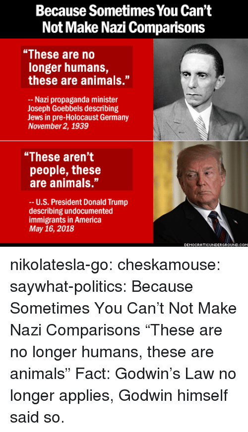 """u-s-president: Because Sometimes You Can't  Not Make Nazi Comparisons  """"These are no  longer humans,  these are animals.""""  Nazi propaganda minister  Joseph Goebbels describing  Jews in pre-Holocaust Germany  November 2, 1939  """"These aren't  people, these  are animals.""""  -- U.S. President Donald Trump  describing undocumented  immigrants in America  May 16, 2018  EMOCRATICUNDERGRO  UND.C nikolatesla-go:  cheskamouse:  saywhat-politics:    Because Sometimes You Can't Not Make Nazi Comparisons   """"These are no longer humans, these are animals""""  Fact: Godwin's Law no longer applies, Godwin himself said so."""