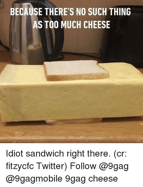 Idiot Sandwich: BECAUSE THERE's NO suCH THING  S TOO MUCH CHEESE Idiot sandwich right there. (cr: fitzycfc Twitter) Follow @9gag @9gagmobile 9gag cheese