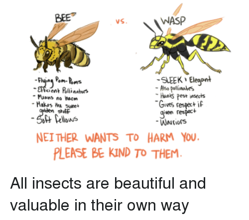 Beautiful, Wasp, and Bee: BEE  WASP  SLEEK Eleaont  cient Polli nators  Also pollinales  Hants Pest insects  Gives respeci  given respact  Muons no harm  stutF  Pellows  NEI THER WANTS TO HARM YOU  LEASE BE KIND TO THEM All insects are beautiful and valuable in their own way