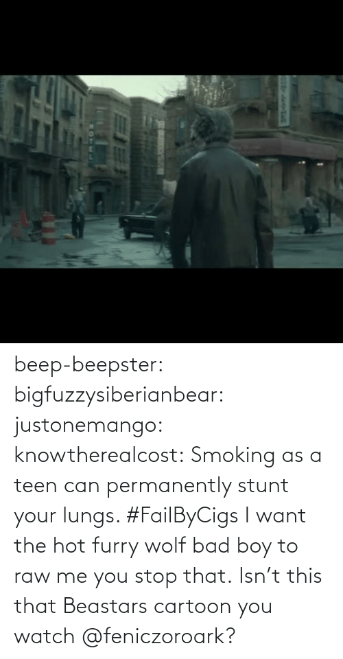 hot: beep-beepster: bigfuzzysiberianbear:  justonemango:  knowtherealcost:  Smoking as a teen can permanently stunt your lungs. #FailByCigs  I want the hot furry wolf bad boy to raw me  you stop that.     Isn't this that Beastars cartoon you watch @feniczoroark?