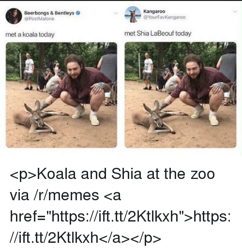"Memes, Shia LaBeouf, and Today: Beerbongs & Bentleys  @PostMalone  Kangaroo  @YourFavKangaroo  met a koala today  met Shia LaBeouf today <p>Koala and Shia at the zoo via /r/memes <a href=""https://ift.tt/2Ktlkxh"">https://ift.tt/2Ktlkxh</a></p>"