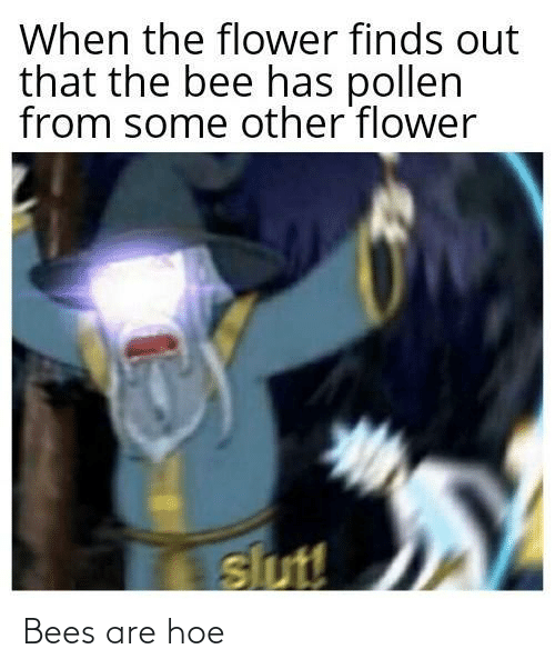Bees: Bees are hoe
