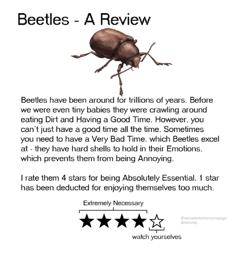 Bad Time: Beetles - A Review  Beetles have been around for trillions of years. Before  we were even tiny babies they were crawling around  eating Dirt and Having a Good Time. However, you  can't just have a good time all the time. Sometimes  you need to have a Very Bad Time, which Beetles excel  at - they have hard shells to hold in their Emotions,  which prevents them from being Annoying  I rate them 4 stars for being Absolutely Essential. 1 star  has been deducted for enjoying themselves too much  Extremely Necessary  @welcometomymemepage  @wtmmp  watch yourselves