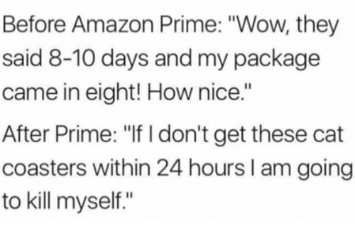 "Amazon, Amazon Prime, and Wow: Before Amazon Prime: ""Wow, they  said 8-10 days and my package  came in eight! How nice.""  After Prime: ""If I don't get these cat  coasters within 24 hours I am going  to kill myself."""