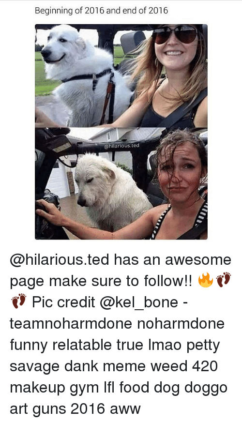Awesomes: Beginning of 2016 and end of 2016  @hilarious. ted @hilarious.ted has an awesome page make sure to follow!! 🔥👣👣 Pic credit @kel_bone - teamnoharmdone noharmdone funny relatable true lmao petty savage dank meme weed 420 makeup gym lfl food dog doggo art guns 2016 aww