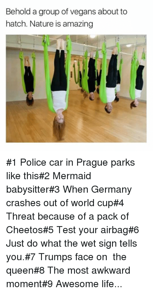 Cheetos, Life, and Police: Behold a group of vegans about to  hatch. Nature is amazing #1 Police car in Prague parks like this#2 Mermaid babysitter#3 When Germany crashes out of world cup#4 Threat because of a pack of Cheetos#5 Test your airbag#6 Just do what the wet sign tells you.#7 Trumps face on the queen#8 The most awkward moment#9 Awesome life...