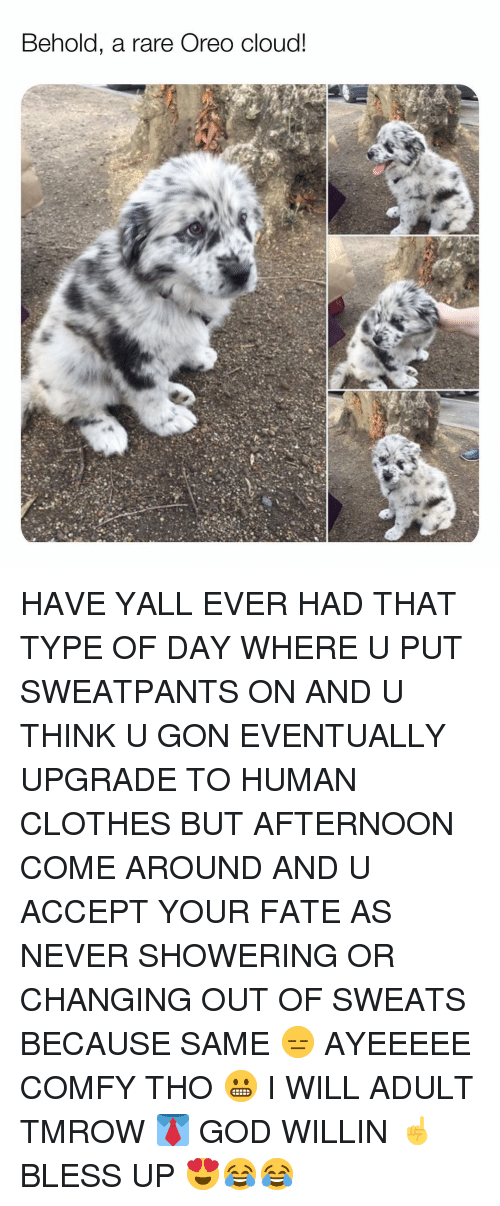 Bless Up, Clothes, and God: Behold, a rare Oreo cloud! HAVE YALL EVER HAD THAT TYPE OF DAY WHERE U PUT SWEATPANTS ON AND U THINK U GON EVENTUALLY UPGRADE TO HUMAN CLOTHES BUT AFTERNOON COME AROUND AND U ACCEPT YOUR FATE AS NEVER SHOWERING OR CHANGING OUT OF SWEATS BECAUSE SAME 😑 AYEEEEE COMFY THO 😬 I WILL ADULT TMROW 👔 GOD WILLIN ☝️ BLESS UP 😍😂😂