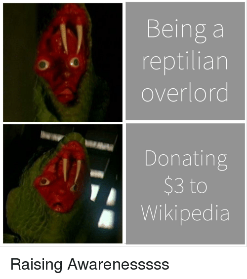 Funny, Wikipedia, and Overlord: Being a  reptilian  overlord  Donating  $3 to  Wikipedia