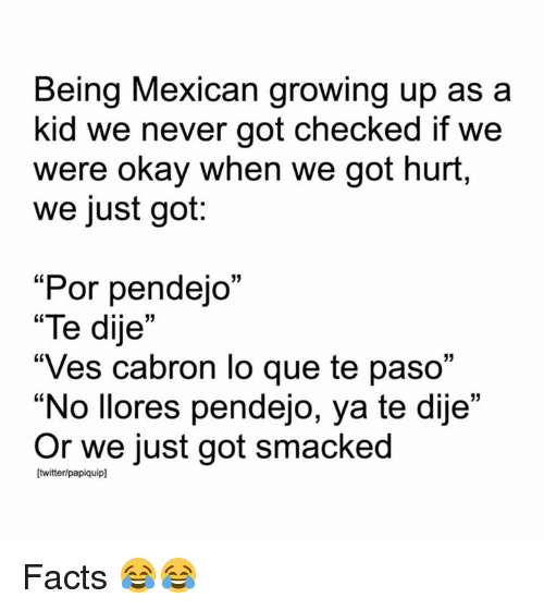 "Facts, Growing Up, and Memes: Being Mexican growing up as a  kid we never got checked if we  were okay when we got hurt,  we just got:  ""Por pendejo""  ""Te dije""  ""Ves cabron lo que te paso""  No llores pendejo, ya te dije  Or we just got smacked  C0  Itwitter/papiquipl Facts 😂😂"