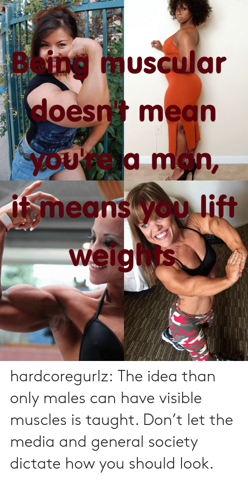 Muscular: Being  muscular  doesn mean  yOUrea man,  means yOD lift  weights hardcoregurlz:  The idea than only males can have visible muscles is taught. Don't let the media and general society dictate how you should look.