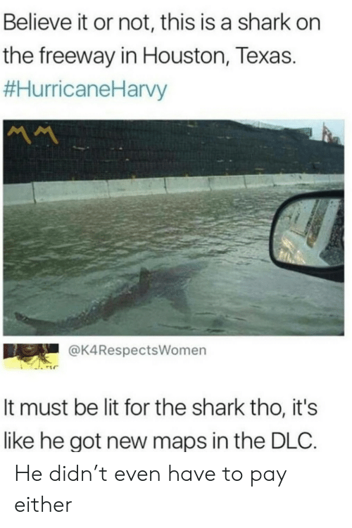 Believe It: Believe it or not, this is a shark on  the freeway in Houston, Texas.  #HurricaneHarvy  MM  @K4RespectsWomen  It must be lit for the shark tho, it's  like he got new maps in the DLC. He didn't even have to pay either