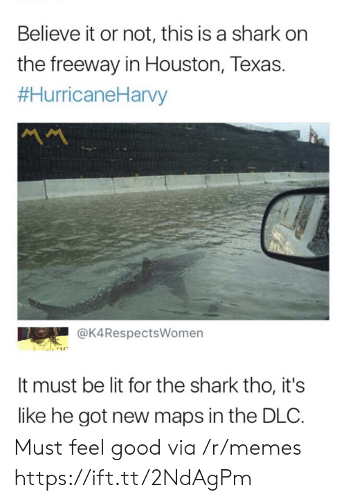 Believe It: Believe it or not, this is a shark on  the freeway in Houston, Texas.  #HurricaneHarvy  MM  @K4RespectsWomen  It must be lit for the shark tho, it's  like he got new maps in the DLC Must feel good via /r/memes https://ift.tt/2NdAgPm