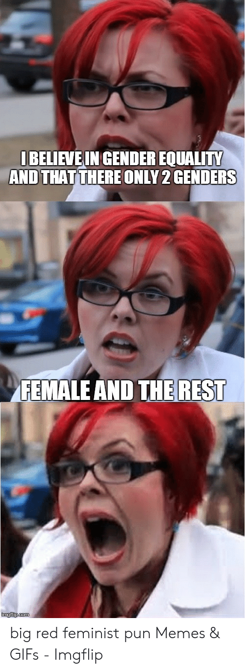 Red Hair Meme: BELIEVEIN GENDER EQUALITY  AND THATTHERE ONLY 2 GENDERS  FEMALE AND THE REST  imgflip.com big red feminist pun Memes & GIFs - Imgflip
