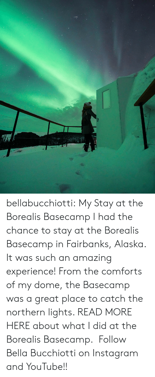 Alaska: bellabucchiotti: My Stay at the Borealis Basecamp   I had the chance to stay at the Borealis Basecamp  in Fairbanks, Alaska. It was such an amazing experience! From the comforts of my dome,  the Basecamp was a great place to catch the northern lights. READ MORE HERE about what I did at the Borealis Basecamp.    Follow Bella Bucchiotti on Instagram and YouTube!!