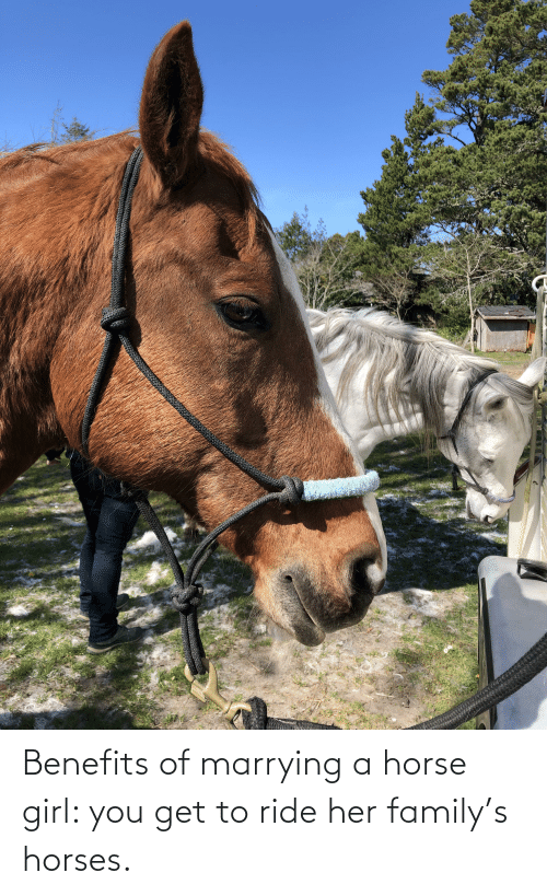 Horses: Benefits of marrying a horse girl: you get to ride her family's horses.