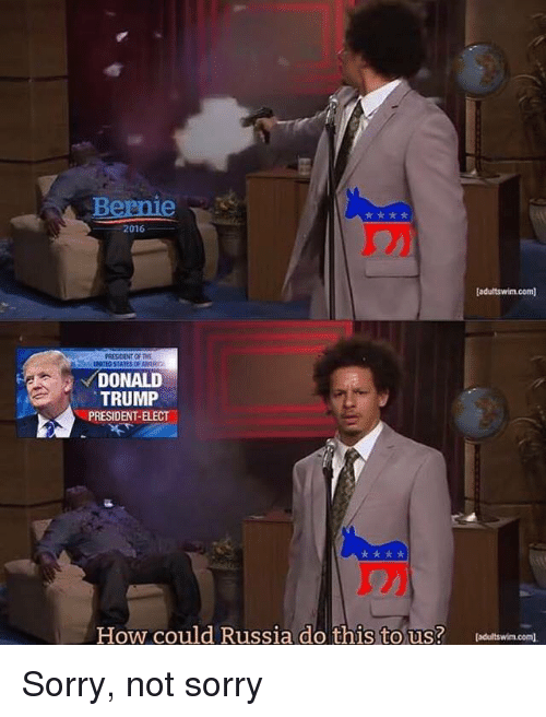The Donald: Bernie  2016  [adultswim.com  PRESIDENT OF THE  DONALD  TRUMP  PRESIDENT-ELECT  How could Russia do this to us? leditswin.com. Sorry, not sorry