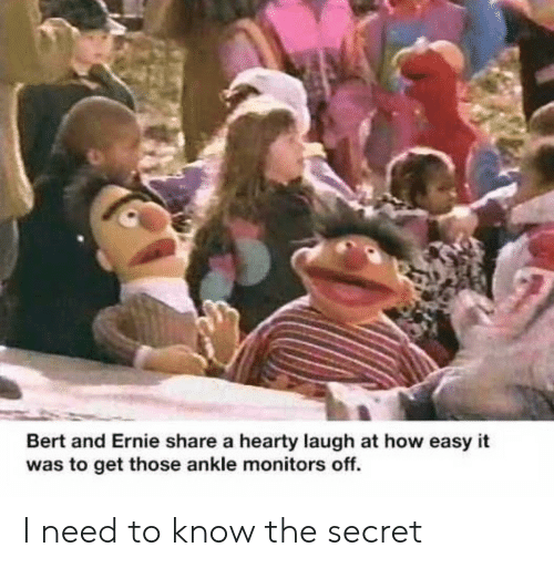 Bert and Ernie, How, and Secret: Bert and Ernie share a hearty laugh at how easy it  was to get those ankle monitors off. I need to know the secret
