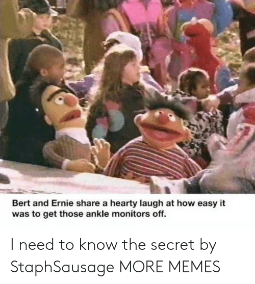 Dank, Memes, and Target: Bert and Ernie share a hearty laugh at how easy it  was to get those ankle monitors off. I need to know the secret by StaphSausage MORE MEMES