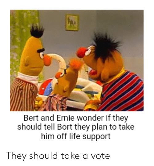 Bert And Ernie Wonder If They Should Tell Bort They Plan To