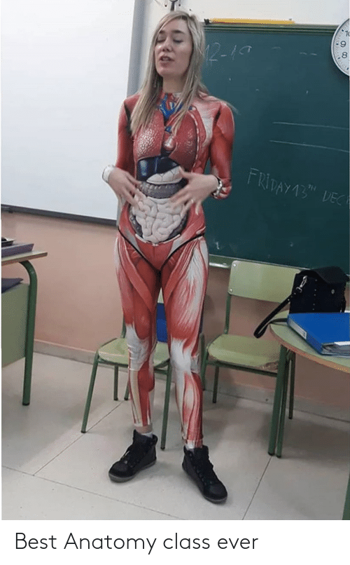 ever: Best Anatomy class ever