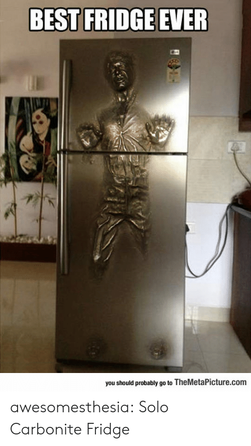 fridge: BEST FRIDGE EVER  you should probably go to TheMetaPicture.com awesomesthesia:  Solo Carbonite Fridge