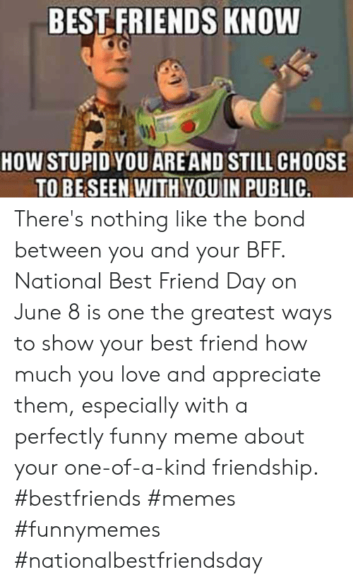 meme about: BEST FRIENDS KNOW  HOW STUPID YOU ARE AND STILL CHOOSE  TO BE SEEN WITH YOUIN PUBLIC. There's nothing like the bond between you and your BFF. National Best Friend Day on June 8 is one the greatest ways to show your best friend how much you love and appreciate them, especially with a perfectly funny meme about your one-of-a-kind friendship.  #bestfriends #memes #funnymemes #nationalbestfriendsday